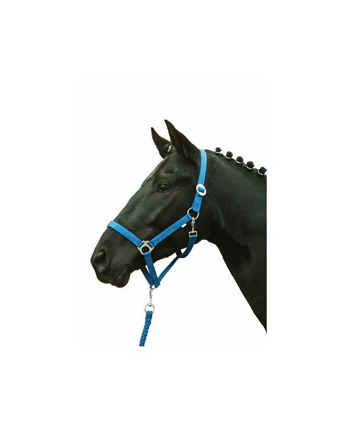 2786-licol_softice_bleu-roi_shetland&poney_lahalleauxminis
